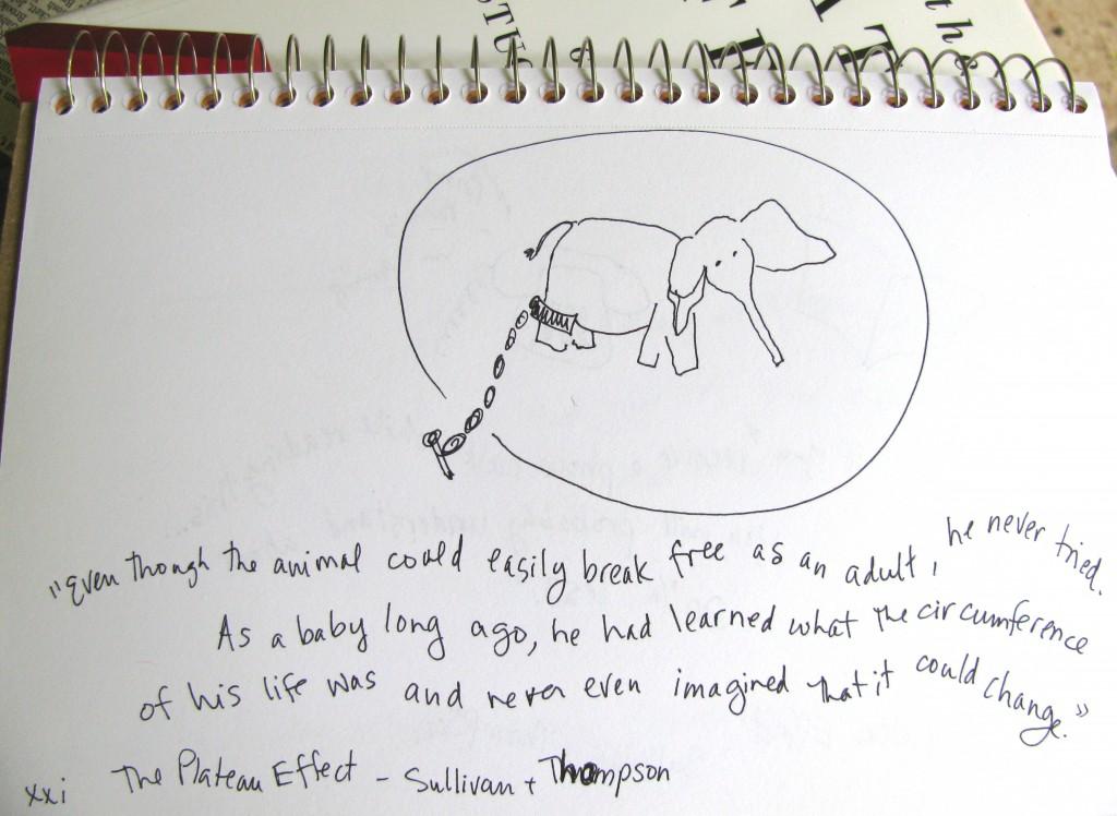 Plateau Effect Elephant Trick