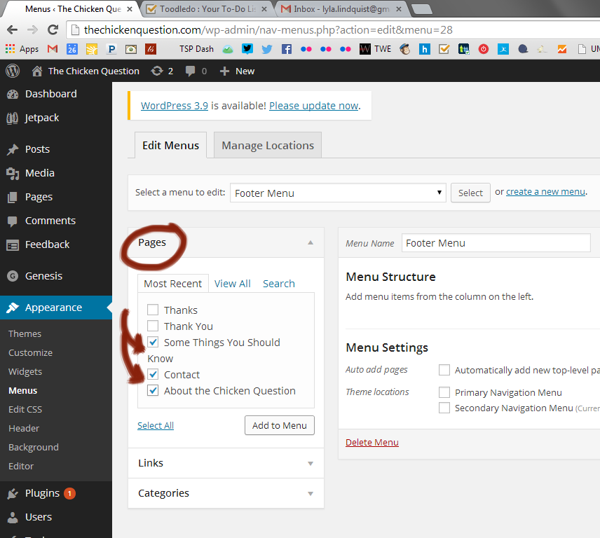 how to add pages to wordpress menu