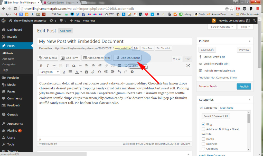 how to embed document in wordpress